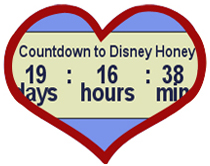 Countdown to Disney Honeymoon