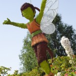 Fairy Fawn