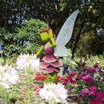 Fairy Rosetta