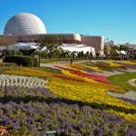 Epcot Flower Gardens, photograph by Samantha McElhaney