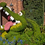 Crocodile Topiary, photograph by Samantha McElhaney