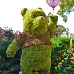 Winnie the Pooh Topiary, photograph by Samantha McElhaney