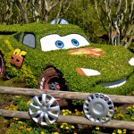 Cars Topiary, photograph by Samantha McElhaney