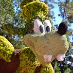 Goofy Topiary, photograph by Samantha McElhaney