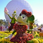 Minnie Mouse and Goofy Topiaries, photograph by Samantha McElhaney